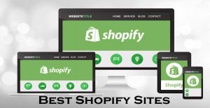 Best Shopify Sites – Shopify Online Store