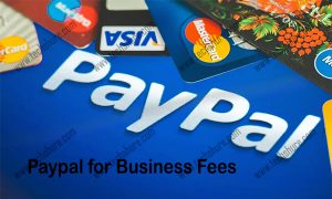 Paypal for Business Fees