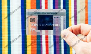 Blue Cash Everyday® Credit Card From American Express Review | How to Apply